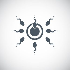 sperm vector icon