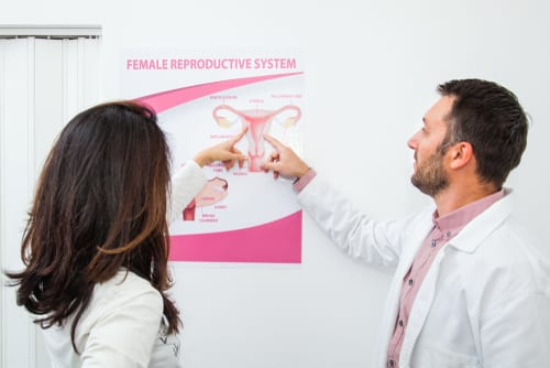 gynecologist explains to the patient female reproductive system-img-blog